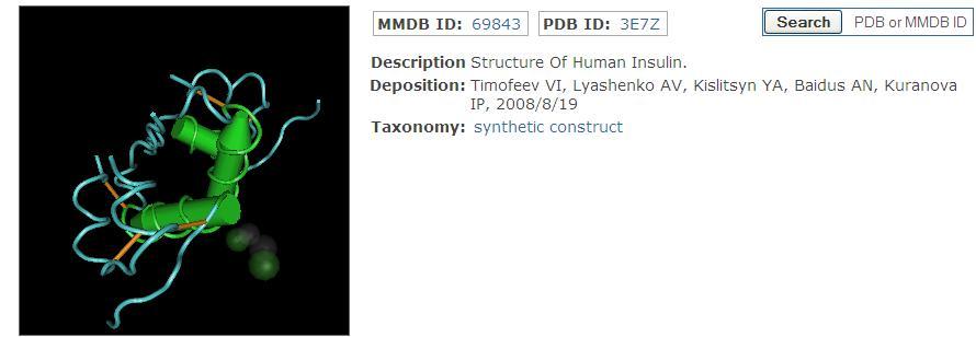 Bioinformatics / MMDB